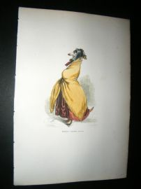 Grandville des Animaux 1842 Hand Col Print. The Cold Greyhound Dog